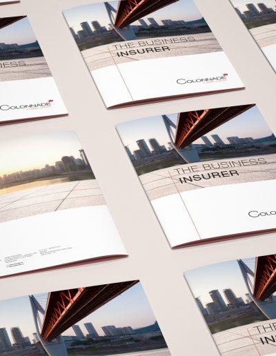 Grafický návrh vizuálního stylu pro Colonnade